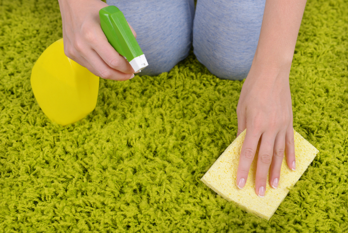 Как почистить ковер в домашних условиях от запаха кошки